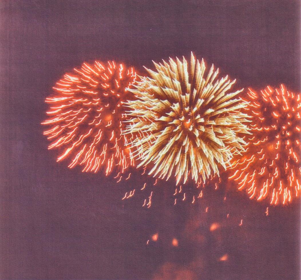 fireworks28.jpg