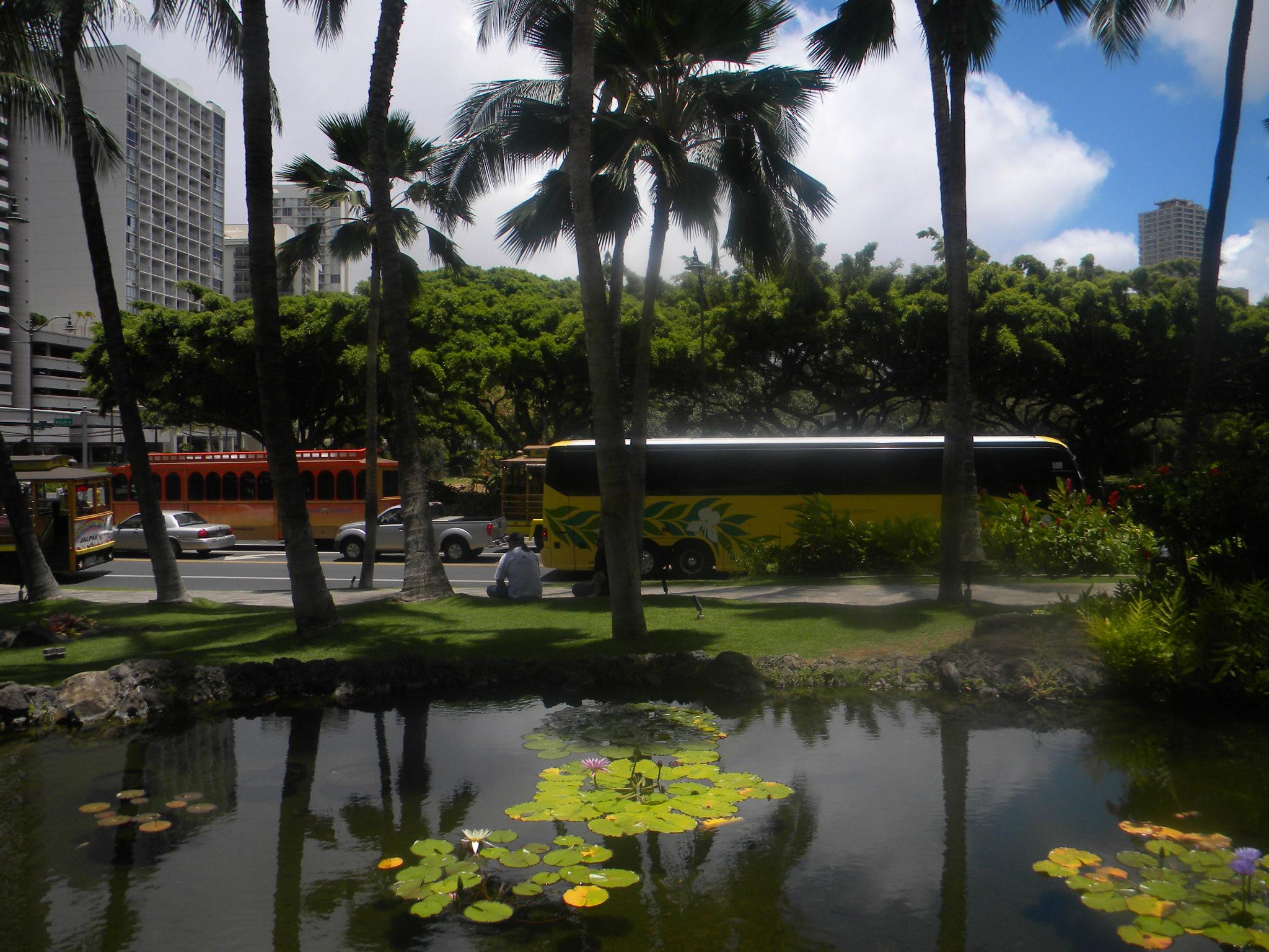 Honolulu city, July 31-August 7, 2012